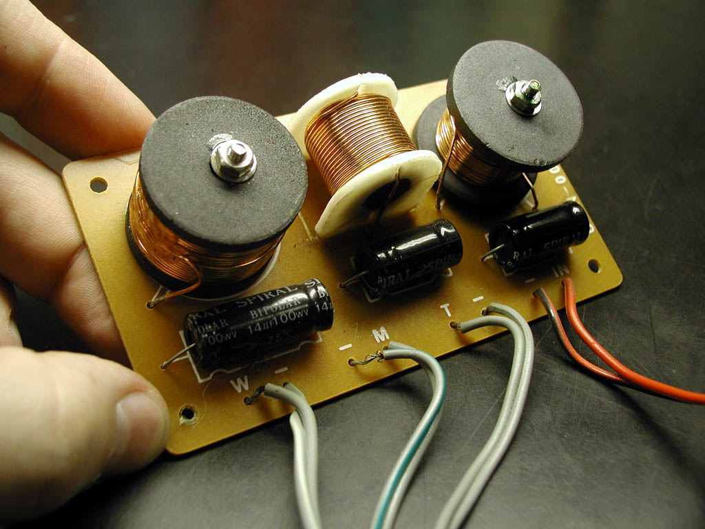 The author holding a crossover circuit